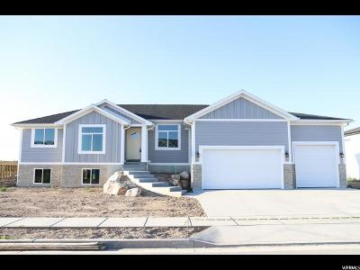 Weber County Single Family Home For Sale: 3404 W 3275 S