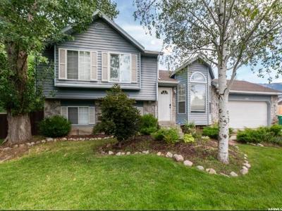 Sandy Single Family Home For Sale: 10019 S Roseboro E