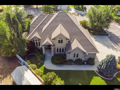 Midvale Single Family Home For Sale: 1130 E Mecham S