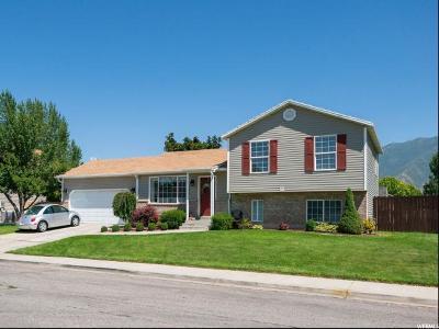 Spanish Fork Single Family Home For Sale: 293 S 1480 E