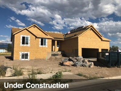 Weber County Single Family Home For Sale: 3880 S 5600 W #12