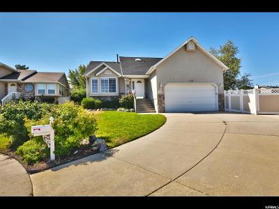 Salt Lake County Single Family Home For Sale: 2010 Bengal Hills Cv