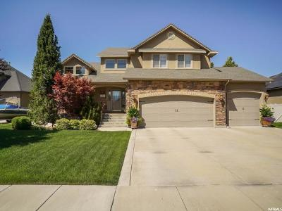 Weber County Single Family Home For Sale: 3689 S 3550 W