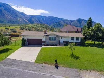 Elk Ridge Single Family Home For Sale: 656 E Autumn Cir