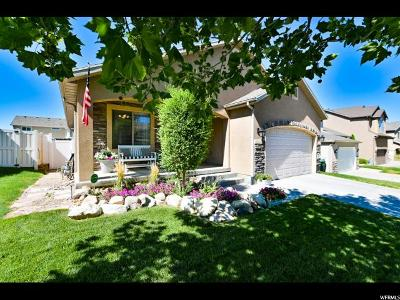 West Jordan Single Family Home For Sale: 7046 W Dry Sycamore Ln S