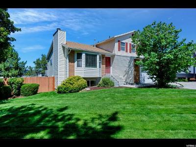 Sandy Single Family Home For Sale: 1117 E Gravel Hills Dr
