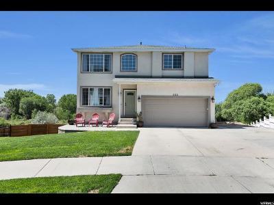 Draper Single Family Home For Sale: 899 E Curlew Cir