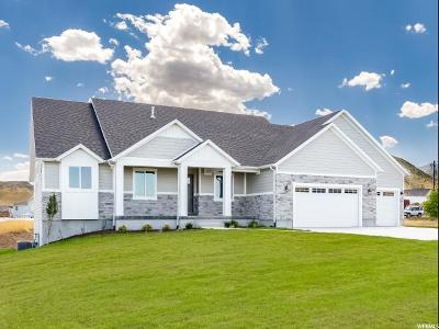 Herriman Single Family Home For Sale: 7399 W Hi Country Rd