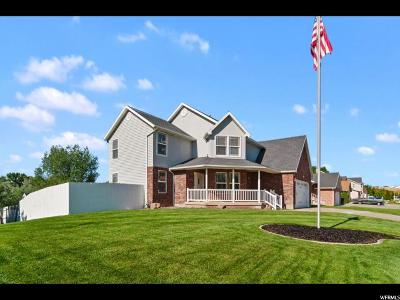 Weber County Single Family Home For Sale: 883 W 4100 S