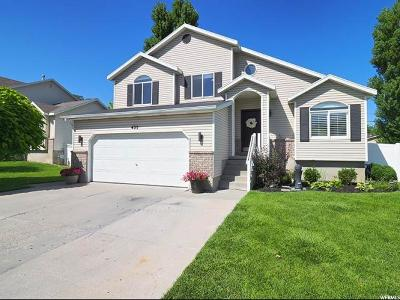 Salt Lake City Single Family Home For Sale: 435 N Chaz Ct