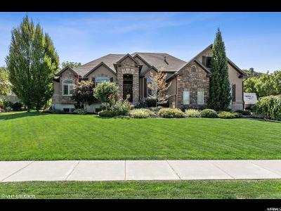 Davis County Single Family Home For Sale: 2467 E 8200 S