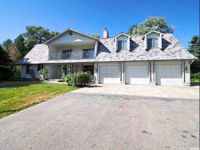 Salt Lake County Single Family Home For Sale: 5978 S Jordan Canal Rd W