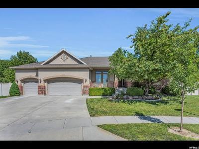 Salt Lake County Single Family Home For Sale: 6412 S Fremont Peak Cir W
