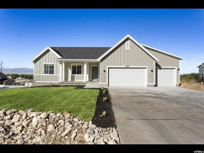 Tooele County Single Family Home For Sale: 8499 N Iron Horse Dr