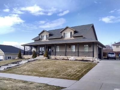Smithfield Single Family Home For Sale: 865 E 500 S