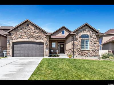 South Jordan Single Family Home For Sale: 4066 W Shady Plum Way S