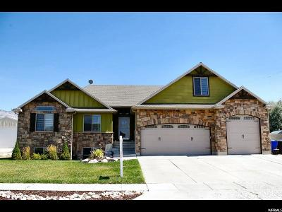 Weber County Single Family Home For Sale: 3612 N Remuda Dr