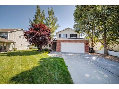 Spanish Fork Single Family Home For Sale: 393 S 590 W