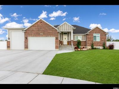 Davis County Single Family Home For Sale: 3291 W 2000 N