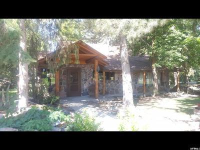 Single Family Home For Sale: 210 S 0100 E