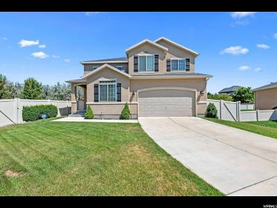 Lehi Single Family Home For Sale: 1651 S Bridle Path Loop