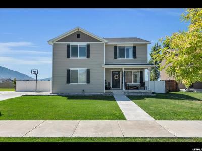 Springville Single Family Home For Sale: 977 W 1000 S