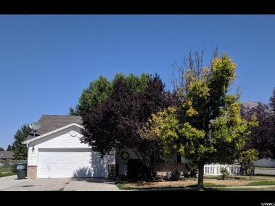 Ogden Single Family Home For Sale: 860 E 1400 N