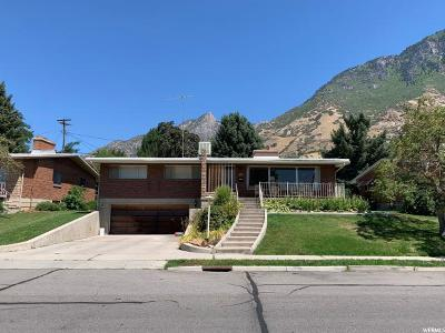 Provo, Orem Single Family Home For Sale: 1114 Birch Ln