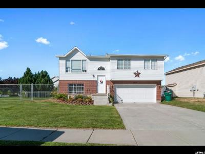 Roy Single Family Home For Sale: 3934 W 5100 S