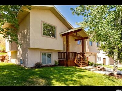 Park City Single Family Home For Sale: 7996 Springshire Dr