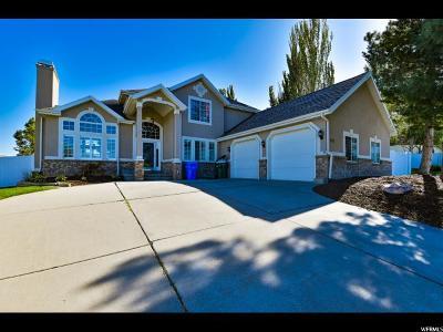 Riverton Single Family Home For Sale: 1039 W River Vista Cove S