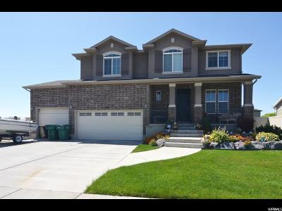 Weber County Single Family Home For Sale: 5891 S 4500 W