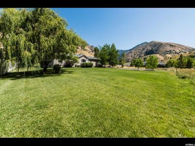 Nibley Single Family Home For Sale: 5737 Hollow Rd