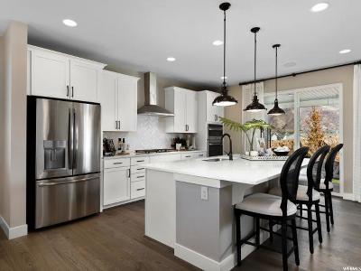 Davis County Single Family Home For Sale: 3182 N 1625 E #102