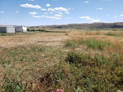 Carbon County Residential Lots & Land For Sale: 750 Pine St