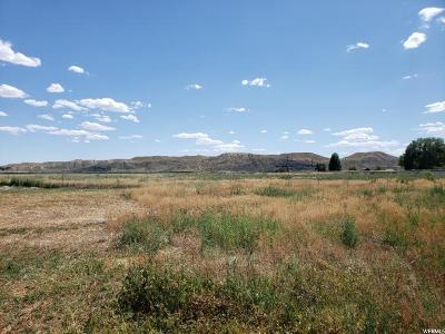 Carbon County Residential Lots & Land For Sale: 760 Pine St