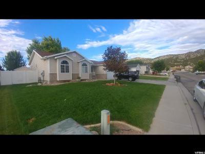 Nephi Single Family Home For Sale: 465 E 760 S