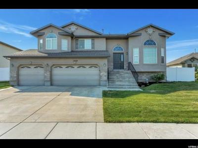 Davis County Single Family Home For Sale: 1029 W Oldham Dr