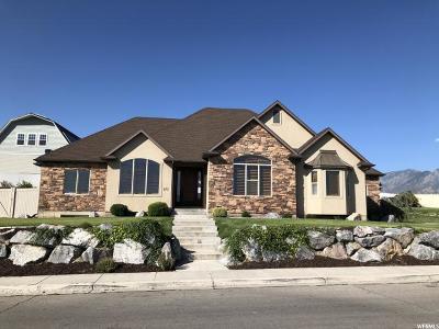Lehi Single Family Home For Sale: 275 E Hansen Ridge Dr