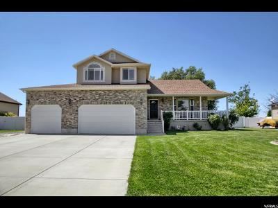 Weber County Single Family Home For Sale: 4581 S 4875 W