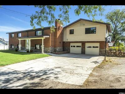 Weber County Single Family Home For Sale: 3530 S 2700 W