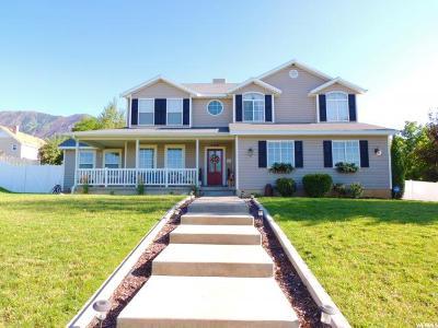 Elk Ridge Single Family Home For Sale: 346 E Bella Vista Ln