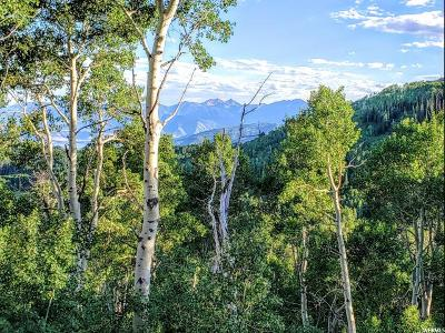 Wasatch County Residential Lots & Land For Sale: 5444 N Hidden Way