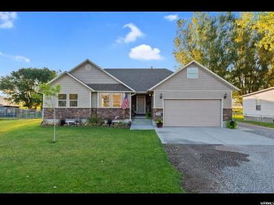 Single Family Home For Sale: 16610 N 5200 W