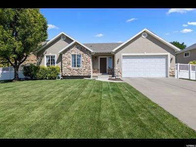 Springville Single Family Home For Sale: 348 N 450 E