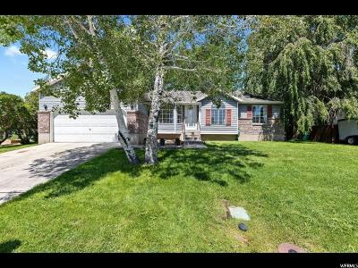 Lehi Single Family Home For Sale: 780 W 2220 N