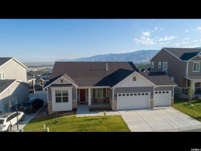Davis County Single Family Home For Sale: 205 E Vista Way