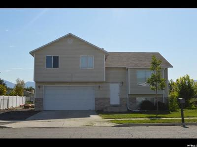 Tooele County Single Family Home For Sale: 79 Worthington