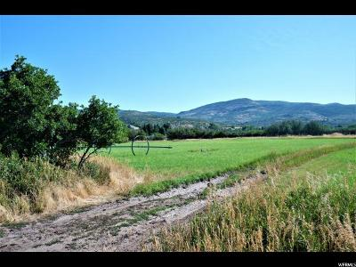 Wasatch County Residential Lots & Land For Sale: 971 S 4800 E