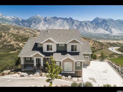 Draper Single Family Home For Sale: 15909 Mercer Hollow Cv